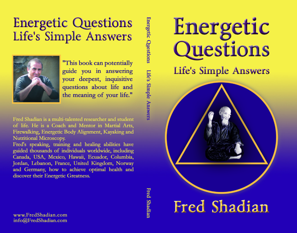 Energetic Questions_BookCover